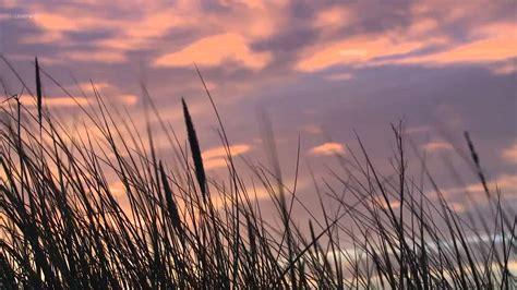 imagenes de sonidos naturales 1 hora viento sonidos de la naturaleza relajante relax
