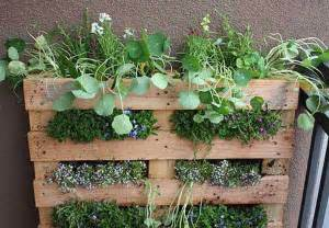 Small Herb Garden Ideas Wall Garden Design Ideas Diy Projects For Decorating Small Spaces With Edible Herbs