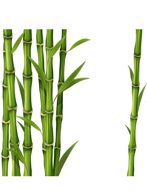 clipart png bamboo png transparent free images png only