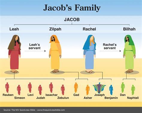 jacob s journey books jacob s family tree torah studies family