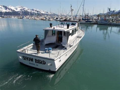 fishing charter boat deals fishing charter boat quot snow bird quot picture of seward