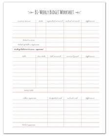 Paycheck To Paycheck Budget Spreadsheet Finance Planners Finance Home Management Binder And I