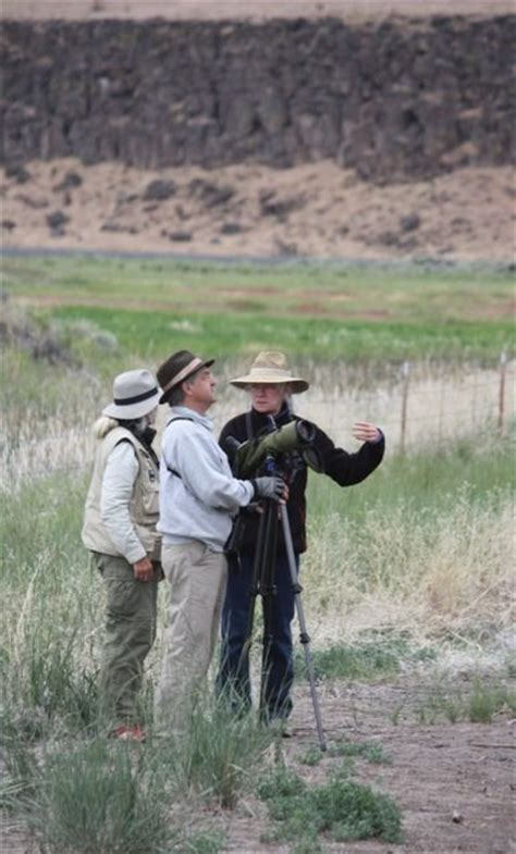 image gallery oregon birders