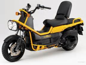 Yellow Honda Ruckus Honda 50 Moped Scooter Motorcycle Pictures