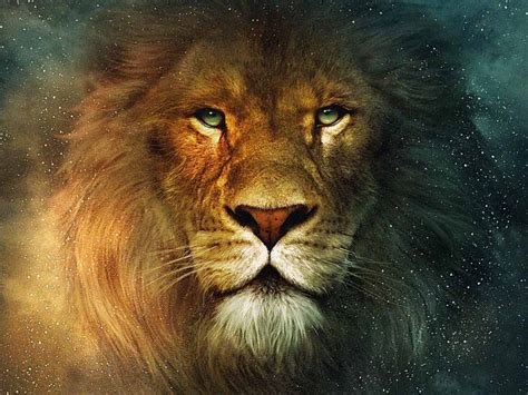 film narnia downlod hd wallpapers chronicles of narnia wallpapers