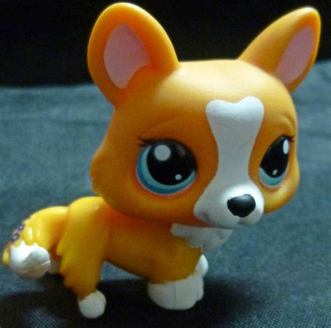 lps puppy 1000 images about lps corgis on