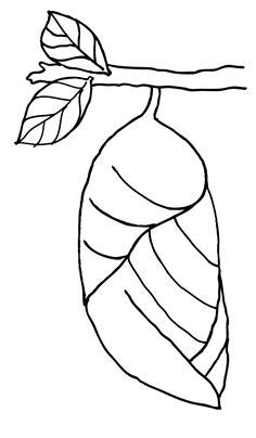 caterpillar egg coloring page butterfly egg coloring page preschool crafts pinterest