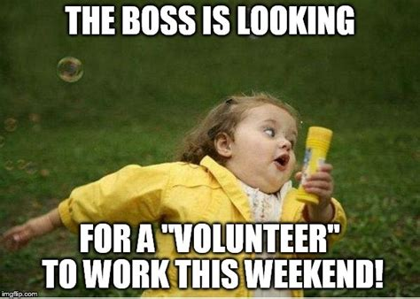 Volunteer Meme - chubby bubbles girl meme the boss is looking for a