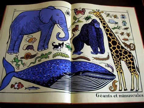 libro zoo ology zoo ology di joelle jolivet moms in the city