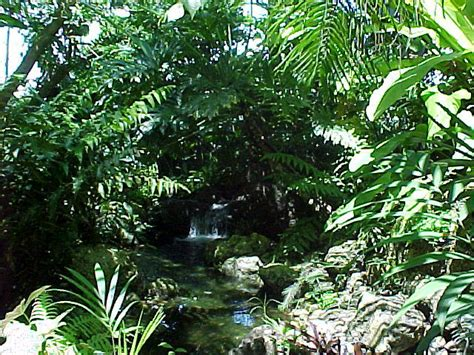 tropical landscapes tropical landscapes sub tropical landscapes list