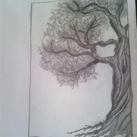 half tree half tree by marlainawho on deviantart