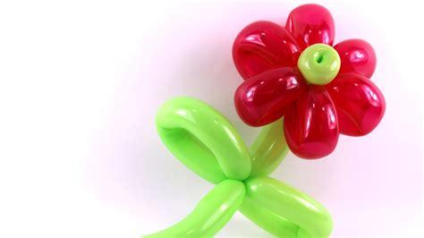 Bday Decorations At Home tutoriel 14 la fleur basic balloon flower la flor