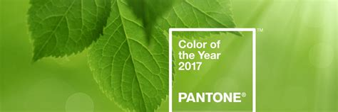 pantone color of the year 2017 rgb pantone color of the year 2017 greenery vanguard seattle