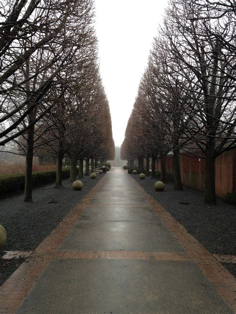 chicago botanic garden winter chicago botanic garden in the winter just me and the