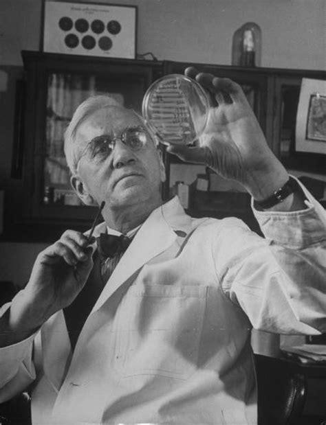 alexander fleming invention of penicillin biography com i heart science sir alexander fleming biography