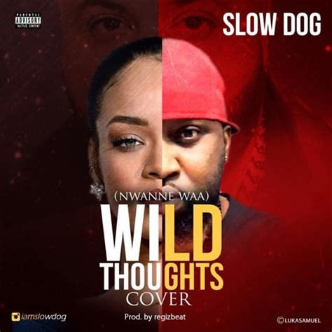 download mp3 wild thoughts download mp3 slowdog nwanne waa wild thoughts cover