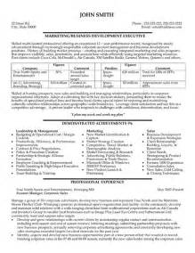 Executive Sle Resume by Professional Business Development Resumes Writing Resume Sle Writing Resume Sle