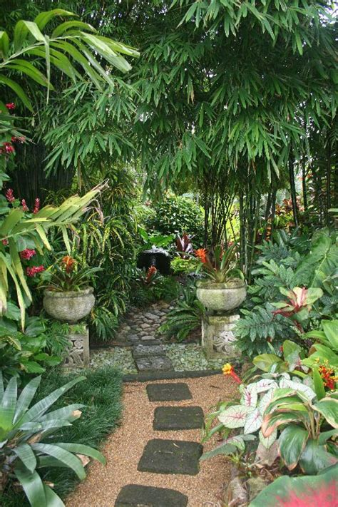 Tropical Garden Ideas Pictures 25 Best Ideas About Tropical Gardens On Tropical Garden Tropical Garden Design And
