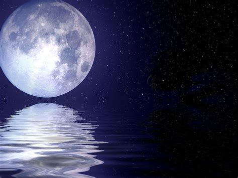 Peacock Wallpapers desktop hd beautiful pics of moon and stars download