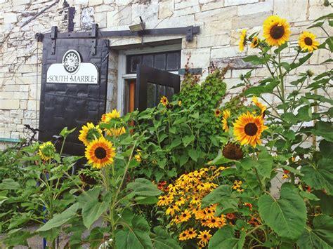 sunflower patch sunflower patch by redsanguine on deviantart