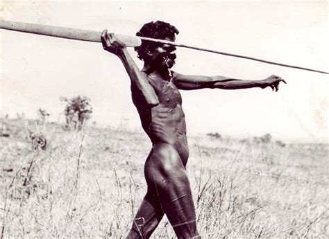 how to hunt with a spear aboriginal artefacts and coolamons