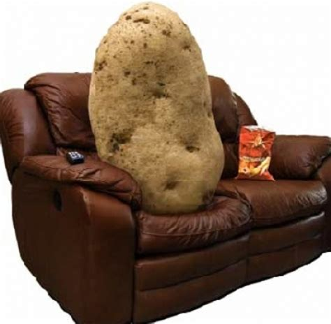 couch potato mean ok but what does that mean more adages aphorisms and