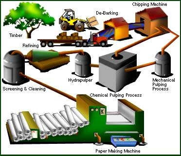 Process Of Paper From Wood - how paper is made wi paper council wi paper council