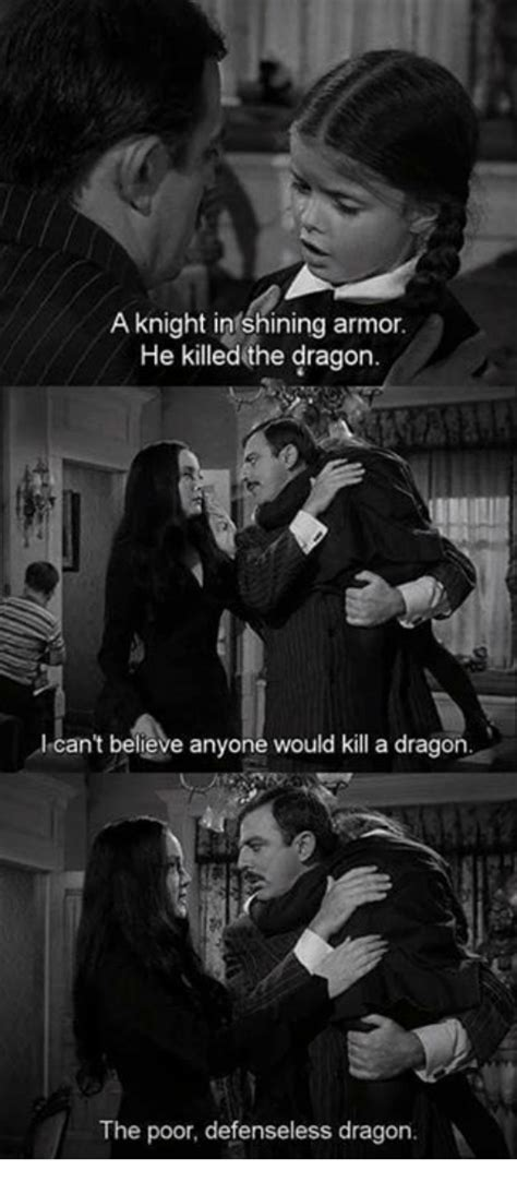 Knight In Shining Armor Meme - a knight in shining armor he killed the dragon can t believe anyone would kill a dragon the poor