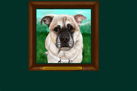 staffy pug cross view topic pug staffy cross commission chicken smoothie
