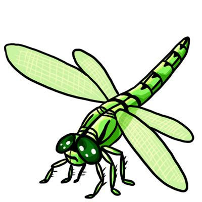 dragonfly clipart 50 free dragonfly clip 18