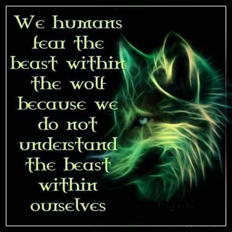 space leader kit exploring proverbs for what matters most books 25 best ideas about wolf spirit on spirit