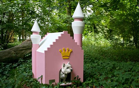 pink dog houses do we per our pets more than ourselves realestate com au