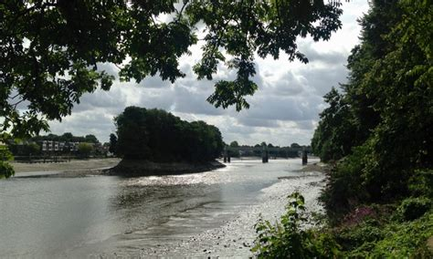 river boat to kew gardens walking the river from mortlake to richmond london