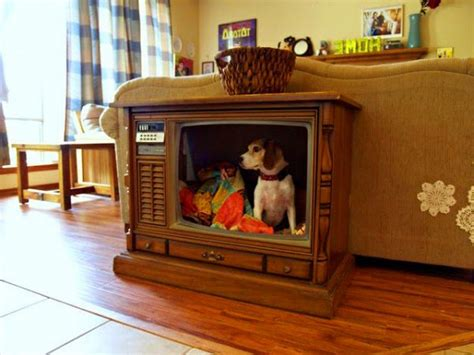 tv dog bed fabulous dog bed design ideas your pets will enjoy the owner builder network