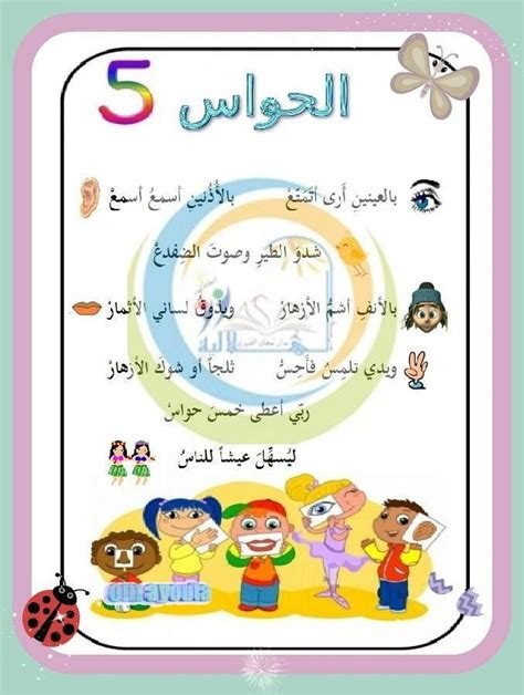 Matratze 1 30 X 2 00 by انشودة الحواس الخمس Arabic For Children