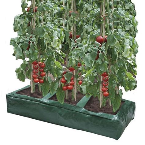 Hedge Planter Bag Large Buy Great Value Tomato Grow Bags From Ireland S Garden Shop