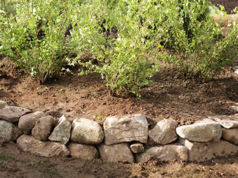 How To Build A Rock Garden Bed How To Build A Raised Bed Berry Garden How Tos Diy