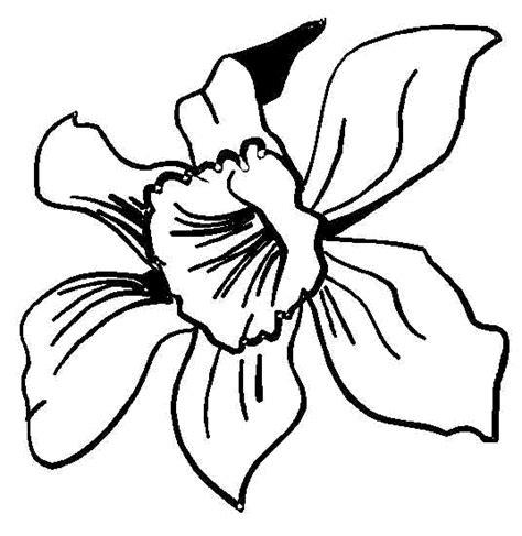 dibujos de flores para colorear dibujos para colorear de flores plantillas para colorear