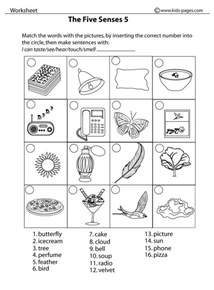 senses 5 amp worksheet