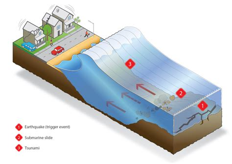 Tsunami Search Tsunami Diagram Www Pixshark Images Galleries With A Bite