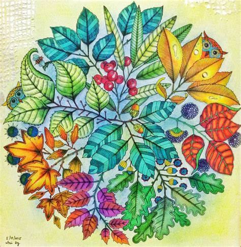 secret garden coloring book completed 25 best ideas about secret garden coloring book on