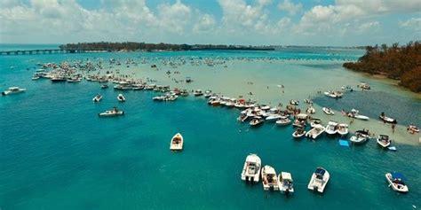 party boat fishing siesta key fl visiting sandbars on the suncoast from ta to sarasota