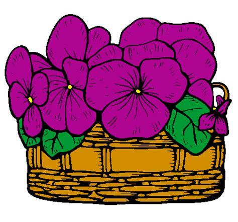 viola fiore disegno disegno paniere di fiori 12 colorato da utente non