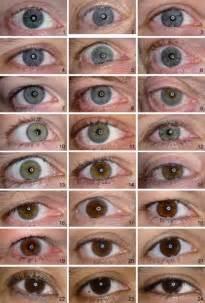 human eye color chart related keywords suggestions for hazel eye color chart