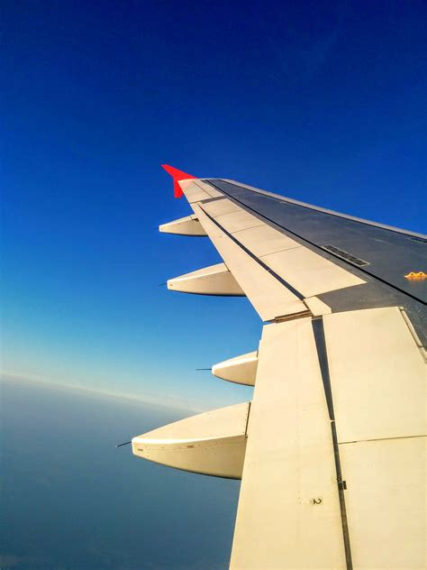 Plane Wings white and black left plane wing 183 free stock photo