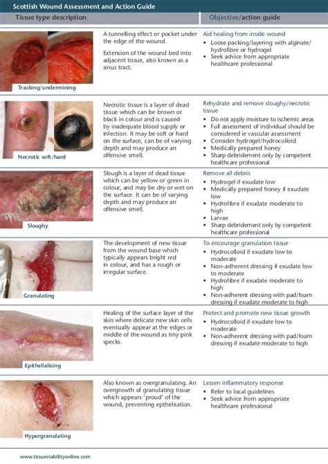Wound Care Description by 20100728 Wound Assessment Tool Guide 2