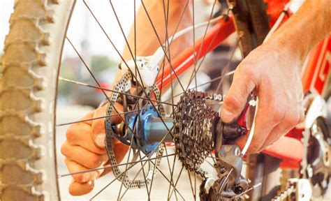 Mountain Bike Maintenance mountain bike maintenance a beginners guide the