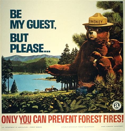 Only You Can Prevent Forest Fires Meme - smokey the bear historic print ads