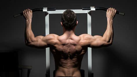 creatine zonder trainen de 6 belangrijkste oefeningen voor sterke rugspieren