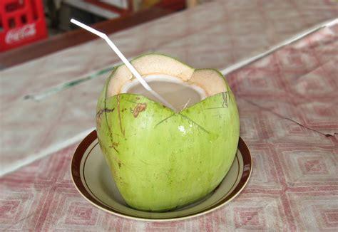 martini coconut mahaguru58 coconut water 10 stunning health benefits